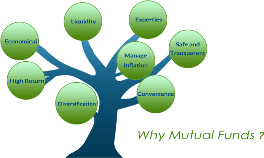 mutual-fund-tree_11_28_2016_1_11_36.png